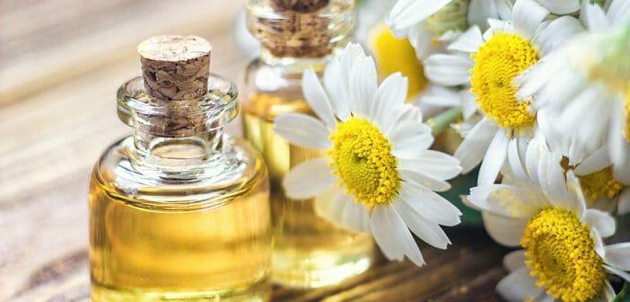 Le thé à la camomille vous aidera-t-il à perdre du poids métabolisme rapide brûle les graisses