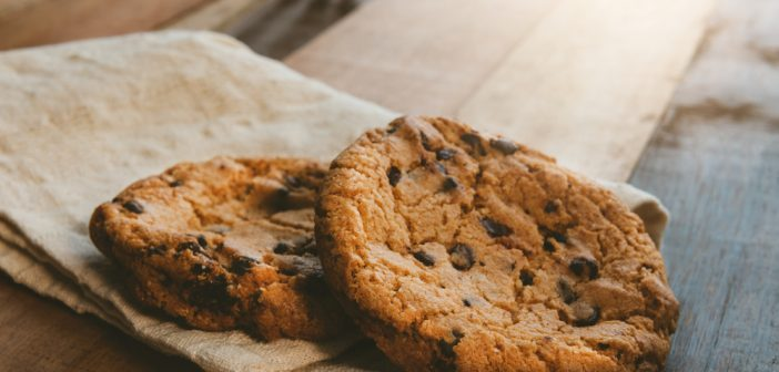 graisse pour les cookies de perte de poids possible perdre de la graisse corporelle pendant la grossesse