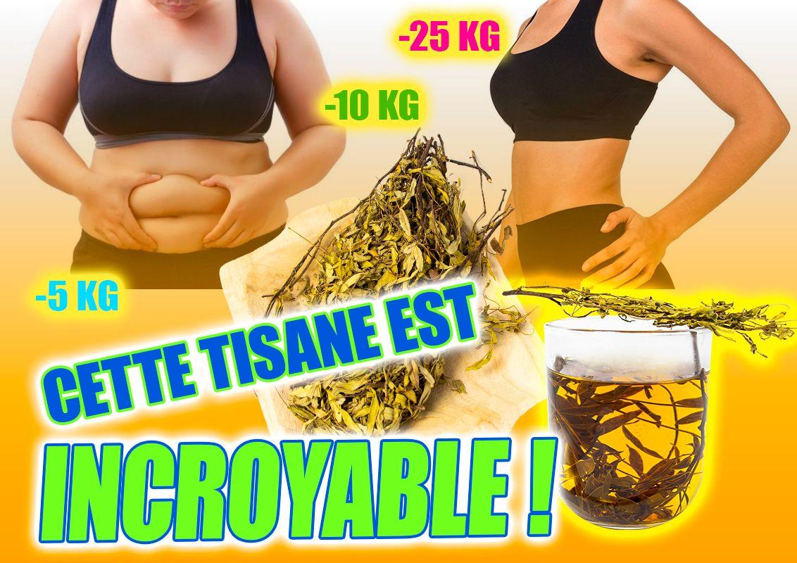 meilleure tisane pour aider à perdre du poids