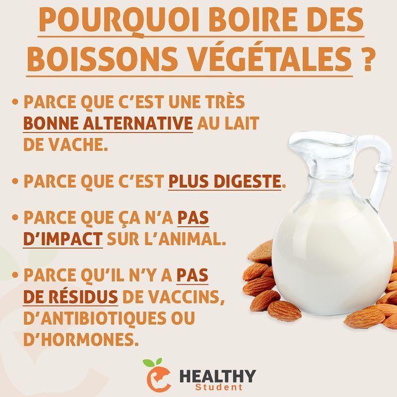 Le lait de vache fait-il grossir ? Avantages et contre-indications