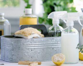 Alimentation Archives - Caniprof | Repas rapide et sain, Soupe perte de poids, Nutrition