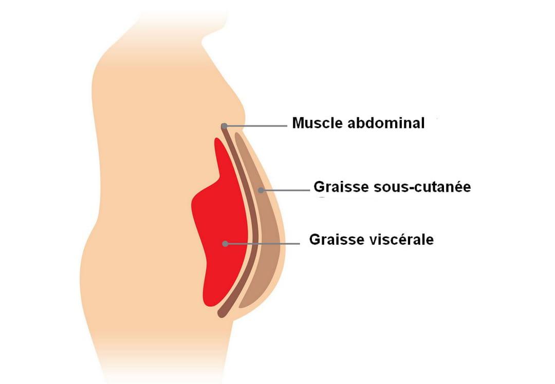 comment perdre de la graisse autour de lomoplate