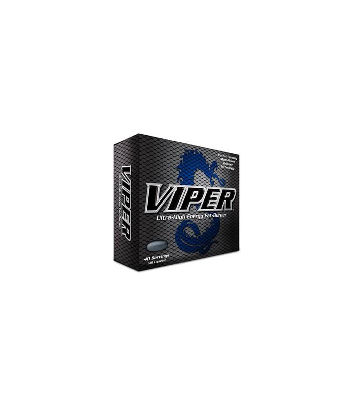 Manuel Yamaha SR Viper X-TX LE ()