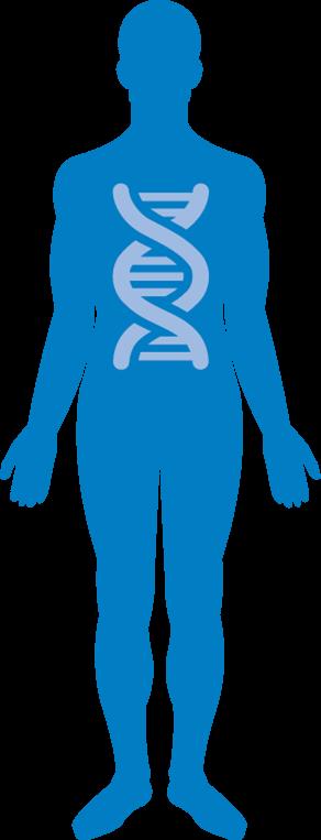 cymbalta provoque-t-il un gain ou une perte de poids