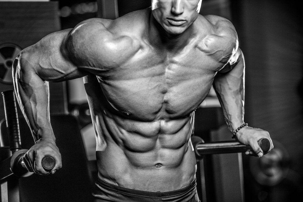 bodybuilders brûleurs de graisse