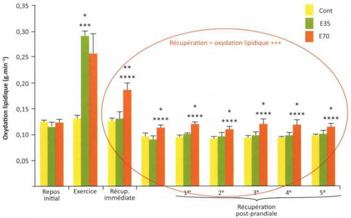 effet de la perte de poids sur la composition corporelle