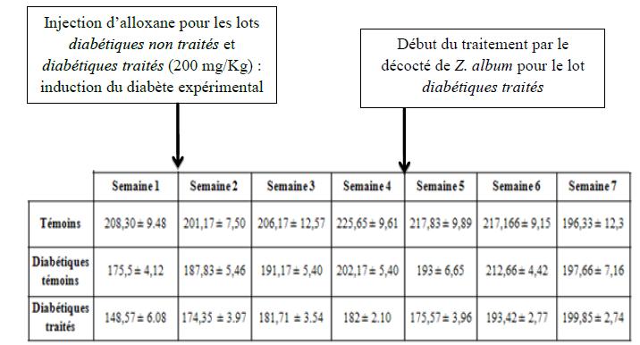 g perte de poids corporel effets secondaires du thé de perte de poids
