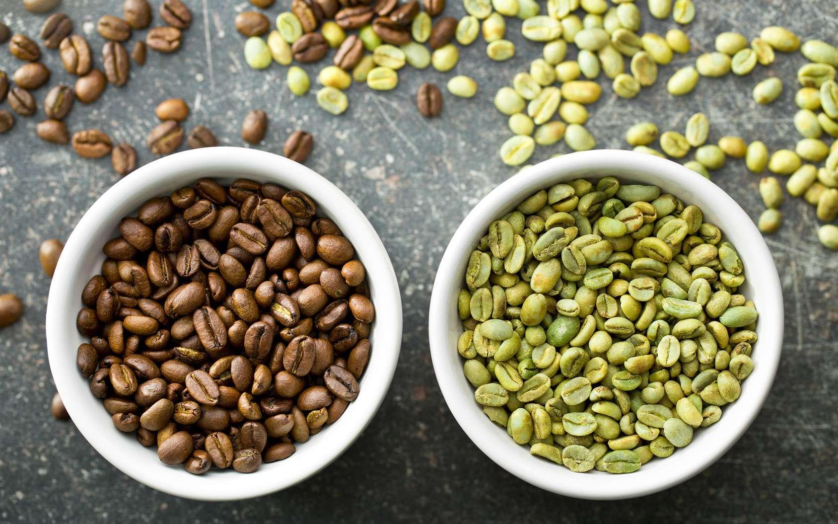 Du café vert pour maigrir ?
