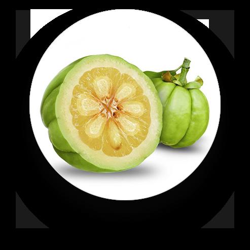 Compléments alimentaires naturels - Produits naturels de santé