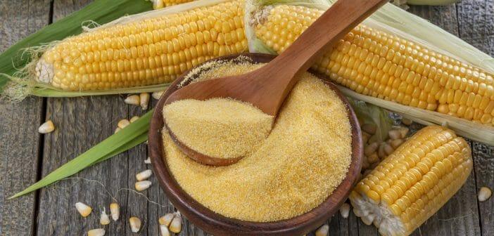 perte de poids de farine de maïs