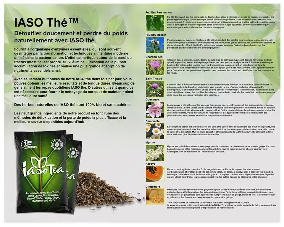 Perdre du poids avec le Iaso Tea de Total Life Changes !