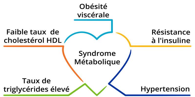 La prévention du syndrome métabolique (Syndrome X)