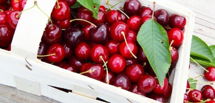 Tomates cerises - Les astuces minceur de la rédac' : bonnes ou mauvaises ? - Elle