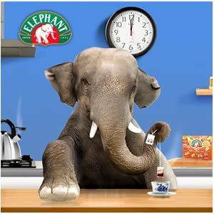 thé minceur éléphant