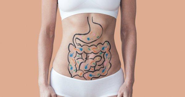 Pourquoi un microbiote déséquilibré fait grossir | gestinfo.fr