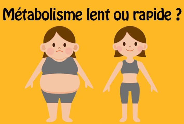 un métabolisme rapide entraîne-t-il une perte de poids meilleur enveloppement de brûleur de graisse du ventre