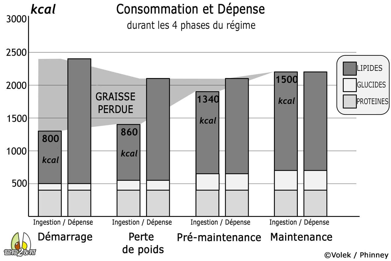 macro pourcentages pour la perte de graisse masculine