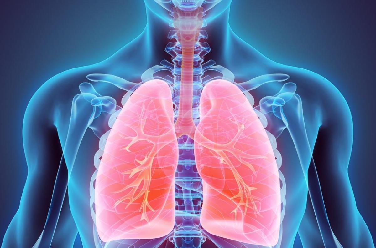 Insuffisance cardiaque - Comment la reconnaître ? - Fiches santé et conseils médicaux