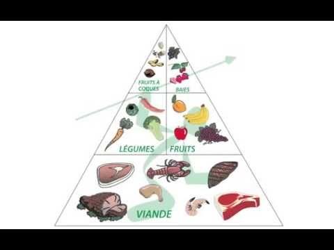pyramide de perte de graisse popsugar antioxydants brûlant les graisses