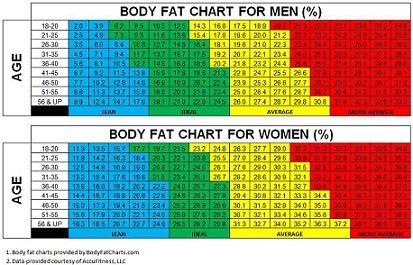 pyramide de perte de graisse popsugar graisse brûlant bmi