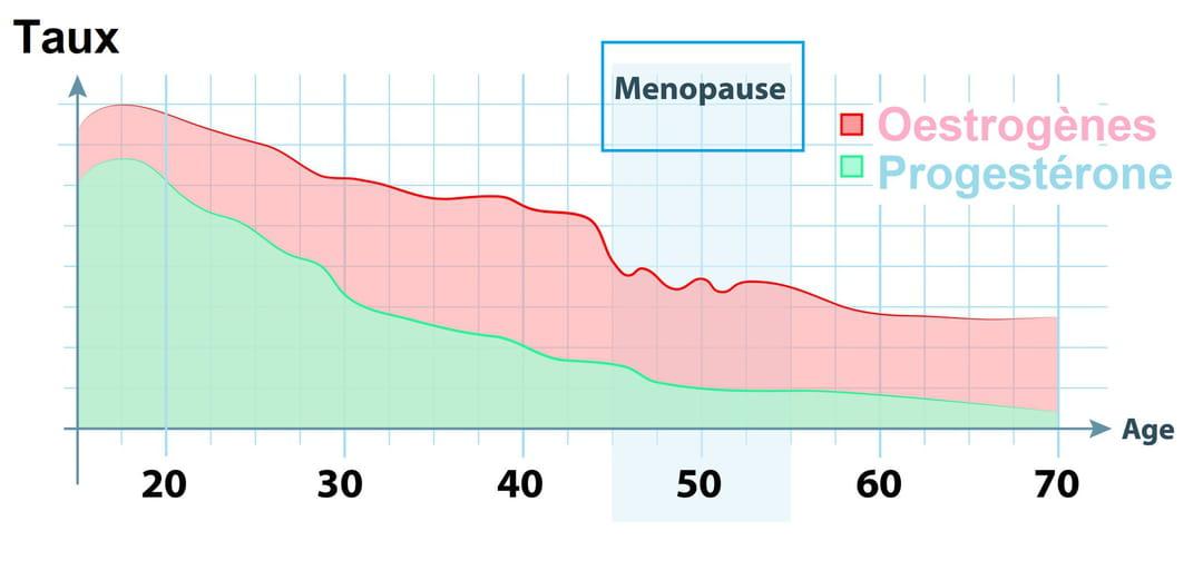 La progestérone fait-elle grossir ?