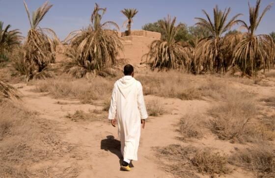 Le Sahara souvenirs d'un voyage d'hiver/02