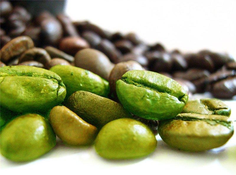 Quels sont les meilleurs brûleurs de graisse naturels ? - Natura Force