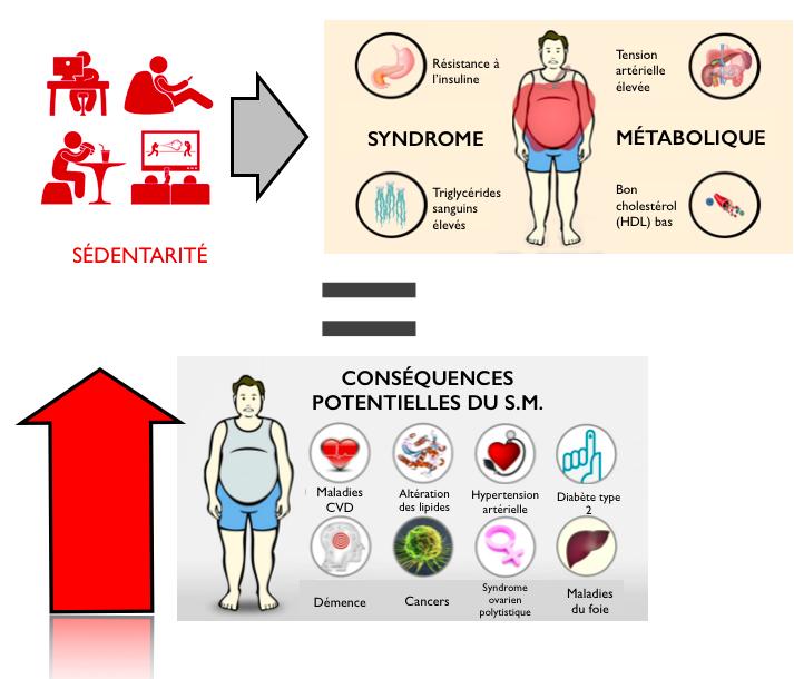 comment perdre du poids syndrome métabolique