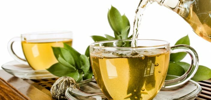 5 plantes qui aident à maigrir