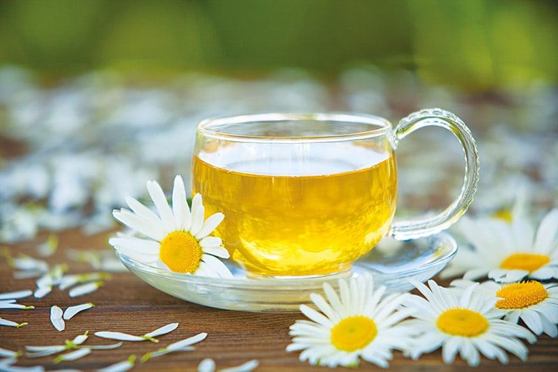 Le thé à la camomille pour maigrir ? - Le blog gestinfo.fr