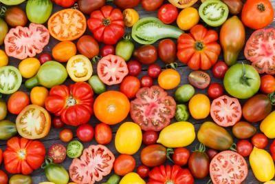 les tomates cerises brûlent les graisses