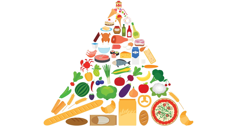 microbiome intestinal de perte de poids