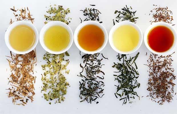 Pourquoi boire du thé pour maigrir ça marche ?
